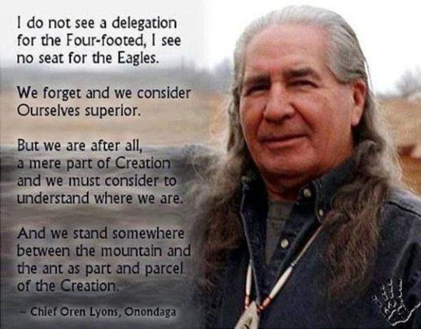 b47e82ad013f27effc583db41a3386ef--native-american-spirituality-native-american-quotes.jpg