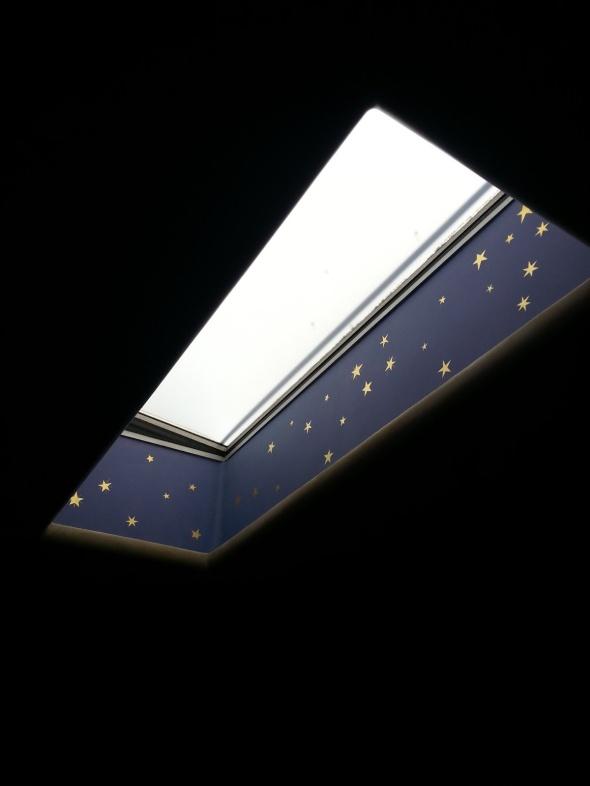 - Berkeley Cafe Rouge skylight.jpg