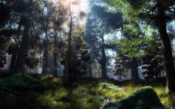 1337196599_spring_forest.jpg