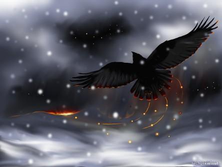 Raven Solstice