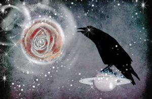 the_cosmic_raven_by_rustymermaid