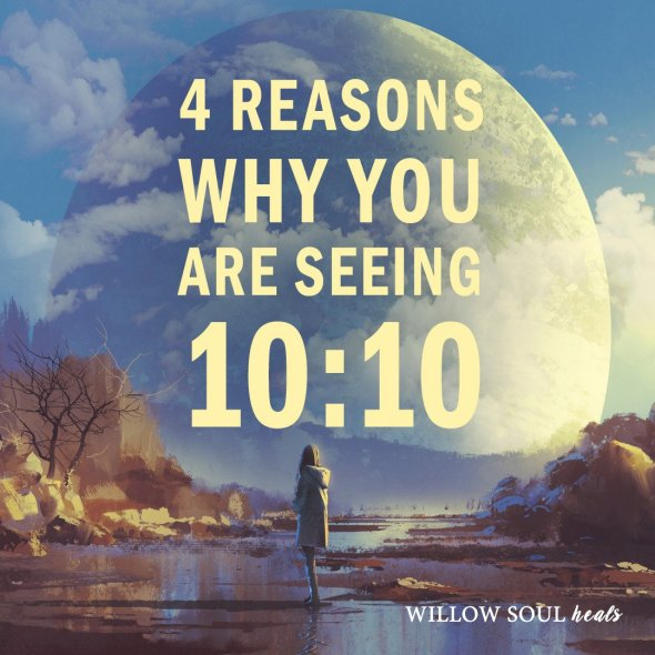 willow-soul-1010-meaning-top-reasons-why-1080x1080.jpg